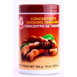 Concentrado de Tamarindo 450ml