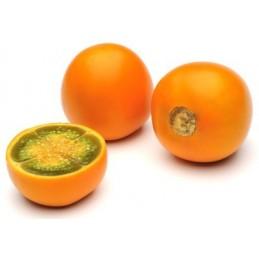 Fruit exotique frais Lulo 500gr