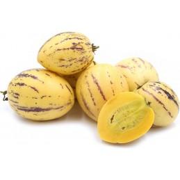 Pepino fruta fresca 1k