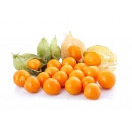Aguaymanto fruta fresca 1kg