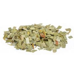 Eucalyptus en feuilles coupées 30gr