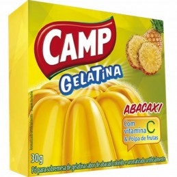 GELATINA ABACAXI CAMP /...
