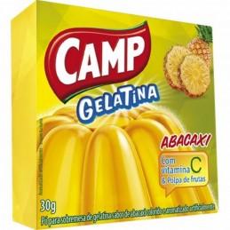 JELLY PINEAPPLE  CAMP /...